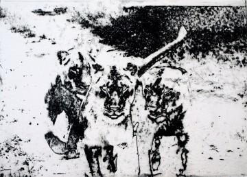 Herta Bannasch Referenz-Bild Namibia Himmelhunde 2012 Intagliotypie Tiefdruck Auf Buetten Ca